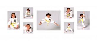 martial arts 633