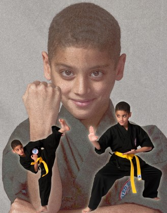 martial arts 650