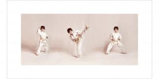 martial arts 651