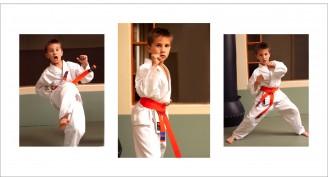 martial arts 660